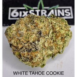 WHITE TAHOE COOKIE (AA++)