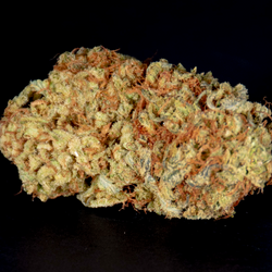 BRUCE BANNER AAA+ 27%THC🔥🔥20% OFF NOW $120 OZ 🔥🔥