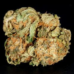 JACK HERER AAA+ 25%THC 1%CBD  🔥🔥20% OFF NOW $112 OZ🔥🔥
