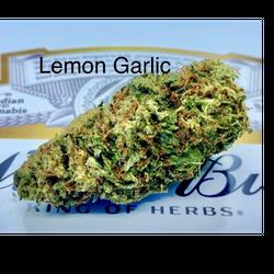 Lemon Garlic - Hybrid - $90 Oz Sale !