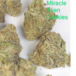 Miracle Alien Cookies - AAAAA - Hybrid