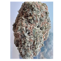 GODFATHER OG(INDICA 23% THC )