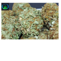 Purple Kush - Tier 1 - sale