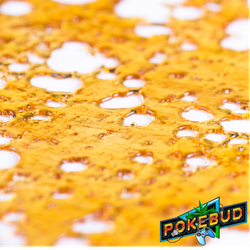IN HOUSE SHATTER