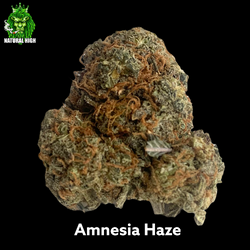 Amnesia Haze 26%THC AA++ - Regular price $220