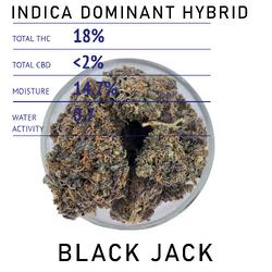 Black Jack - Indica Dominant Hybrid