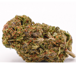 PINK PANTHER (AAA+)