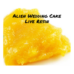 Alien Wedding Cake **Live Resin**