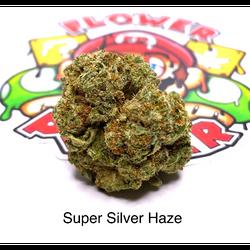 """""""AAAA"""" Super Silver Haze"""