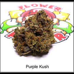 """AAA+"" Purple Kush ($150/oz)"