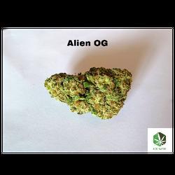 Alien OG