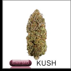 Chemo Kush | Indica | THC: 18% - 21%