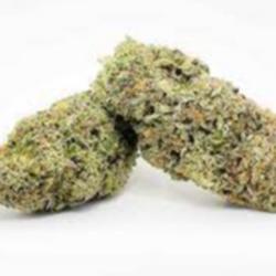 Purple Mac (AAA+) THC 24%     GAS