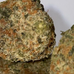 Cali Bubba🔼 24%THC 🔼 🚀🚀🚀🚀