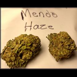 *MENDO HAZE - AA+ - Flower