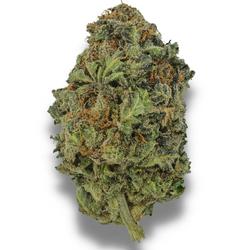 BLACK DIAMOND [AAA+] INDICA 26% THC