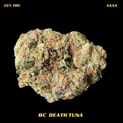 AAAA BC DEATH TUNA-REGULAR 170$ AN OZ-NOW--150$ AN OZ