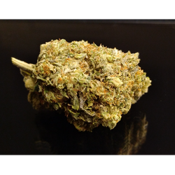 PINK CHAMPAGNE - Special Price $135 oz!
