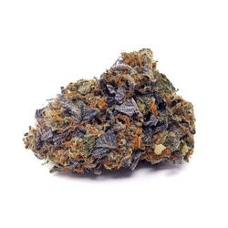 Purple Pugs Breath - AAAA+ - INDICA