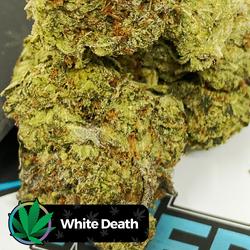 MediFix - White Death