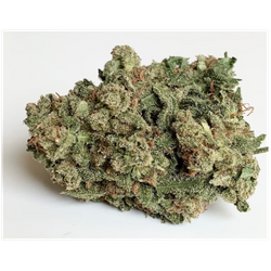 Mother of Berries (Indica Dom) MOB