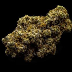Slurricane IX | AAAA+ | 30% THC
