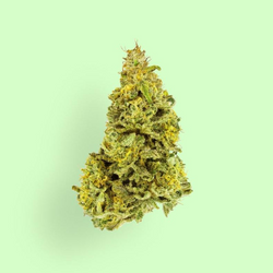 Sour Diesel (OUT of STOCK)