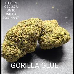 NEW BATCH 🔥 GORILLA GLUE (5 STARS)