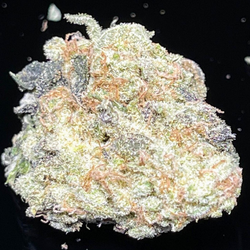 Silver Apple (70%Sativa) – Hybrid – THC 29%