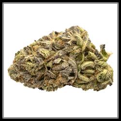 Purple Goo | AAA+ | $55/14G