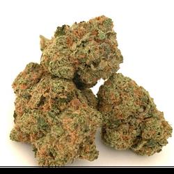 Gorilla Glue #5 THC 28% *New batch*