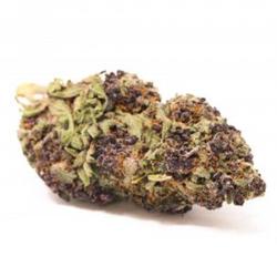 Purple Haze AAA(sativa)