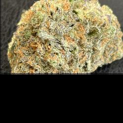 Phantom Cookies 🏆trophy strain 🏆