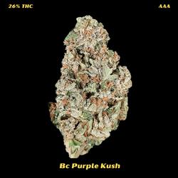AAA Bc Purple Kush  REGULAR 150$ AN OZ-NOW--120$ AN OZ