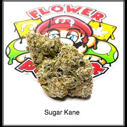 """""""AAAA"""" Sugar Kane"""