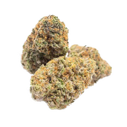 Grand Daddy Purple (Indica - 29%THC) AA+