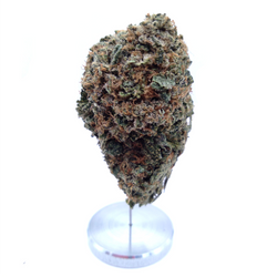 BC (AAAA) AFGHAN KUSH  (SPECIAL SALE)