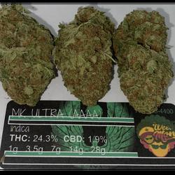MK Ultra (AAA+) THC: 24.3% CBD: 1.9%