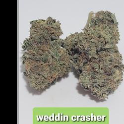 WEDDING CRUSHER