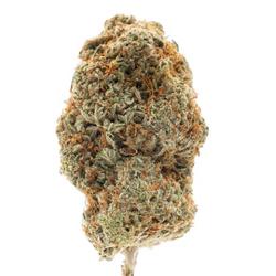Hashplant Haze +AAA B.C Pick