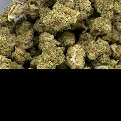 Screwhead OG | 60% Sativa / 40% Indica | THC: 25%