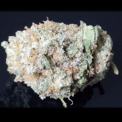 New Cali Kush THC 23%