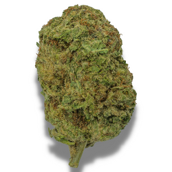 BLUE DREAM [AAA+] HYBRID 26% THC (BUY 1OZ GET 1/2 OZ FREE)