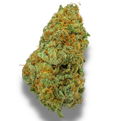 DUTCH TREAT [AAA+] SATIVA 25% THC