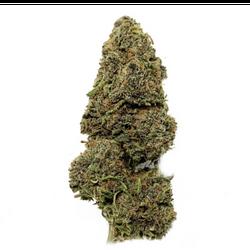 SOLDOUT 3A Purple Sherbet $215 QP/$580 P