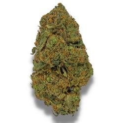 *SALE* BLACK PANTHER [AA+] SATIVA 22% THC