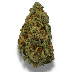 *NEW* GRAPEFRUIT [AA+] HYBRID 23% THC (Buy 1 oz and get 2nd oz for $1)