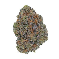 Purple ChemDawg (Limited Edition)