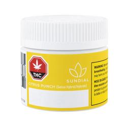 Sundial - Citrus Punch - 3.5g Sativa