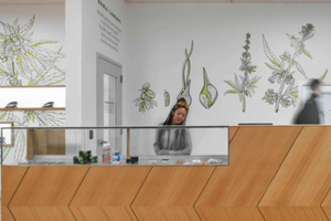 Here's where new pot shops are expected to open in Chicago